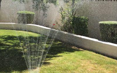 Dancing in the Sprinkler