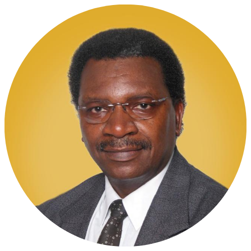 Dr. Shadrick Mazaza BSc.